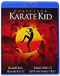 Pack: Karate Kid I-II-III + El Nuevo...