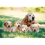 Melissa & Doug 100 Piece Golden Retriever w/Puppies Cardboard Jigsaw