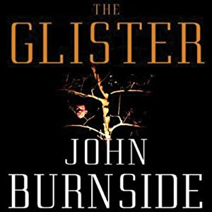 The Glister Audiobook