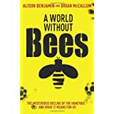 A World Without Beesby Alison Benjamin
