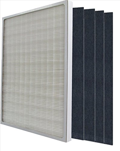 Winix 115115 true hepa plus 4 replacement filter for Winix filter cleaning