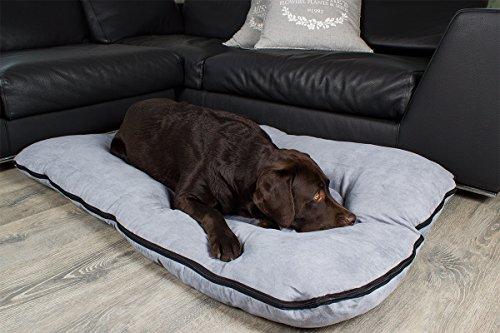 coussin pour chien les bons plans de micromonde. Black Bedroom Furniture Sets. Home Design Ideas