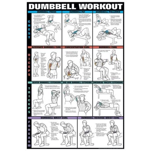 Amazon.com : Dumbbell Workout Charts : Fitness Charts And ...