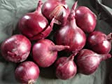 ORGANIC RED ONIONS 750G BAG FROM ARTISANA GROCERY