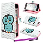 BeeShine Retail Package PU Leather Flip Stand Card Holder Wallet Case Flap Pouch Cover Skin for Apple iPhone 5C + Screen Protector & Touch Stylus Pen (Cute Sleep Owl Pattern)