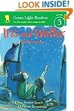 Iris and Walter: The Sleepover (Green Light Readers Level 3)