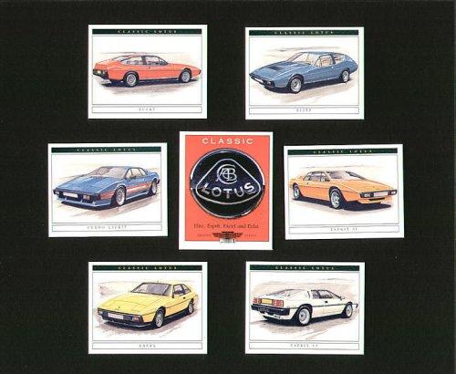 classic-lotus-2nd-series-elite-eclat-esprit-s1-turbo-espirit-espirit-22-3-excel-collectors-cards