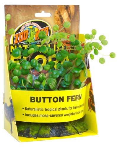 Zoo-Med-Button-Fern-Plante-en-Plastique-pour-Terrarium
