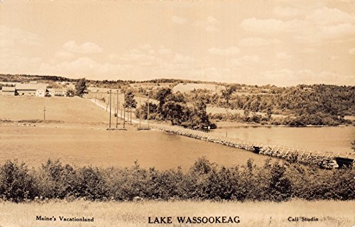 Lake Wassookeag Maine Postcard