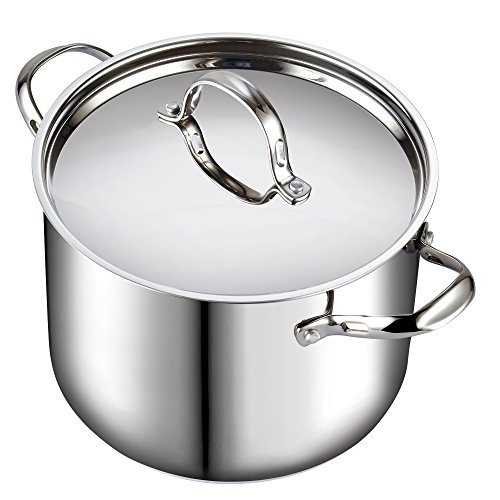 Cooks Standard Classic 02520 12 quart Stainless Steel Stockpot with Lid, Large, Silver (Tfal 12qt Stock Pot compare prices)