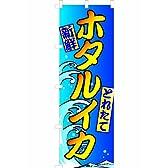 「とれたて新鮮ホタルイカ」のぼり旗 フルカラー 青