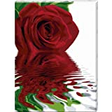 "Schipper 60 929 0475 - Malen nach Zahlen,  Reflections of a Rose, 60x80 cmvon ""Noris"""
