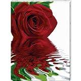 """Schipper 60 929 0475 - Malen nach Zahlen,  Reflections of a Rose, 60x80 cmvon """"Noris Spiele"""""""