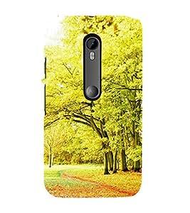 ifasho Designer Phone Back Case Cover Motorola Moto G3 :: Motorola Moto G (3rd Gen) :: Motorola Moto G3 Dual SIM ( Stone Colorful Pattern Design )