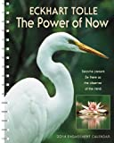 img - for Power of Now 2014 Engagement Calendar book / textbook / text book