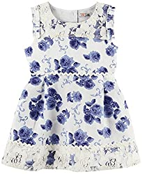 Floral Printed Sleeveless Casual Dress - White/Blue (18-24 Months)