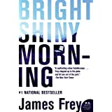 Bright Shiny Morning [Paperback]