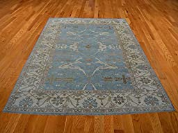 10 x 14 HAND KNOTTED SKY BLUE OUSHAK ORIENTAL RUG VEGETABLE DYES G14241
