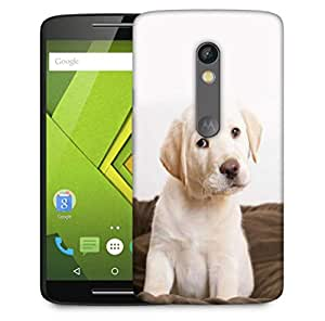 Snoogg Cute Puppy Eyes Wide Designer Protective Phone Back Case Cover For Motorola Moto X Play