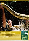 アニマルプラネット ヘビの脅威 オースティン・スティーブンス 最も危険な瞬 [DVD]
