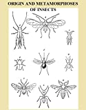 img - for ORIGIN AND METAMORPHOSES OF INSECTS - Fully Illustrated book / textbook / text book