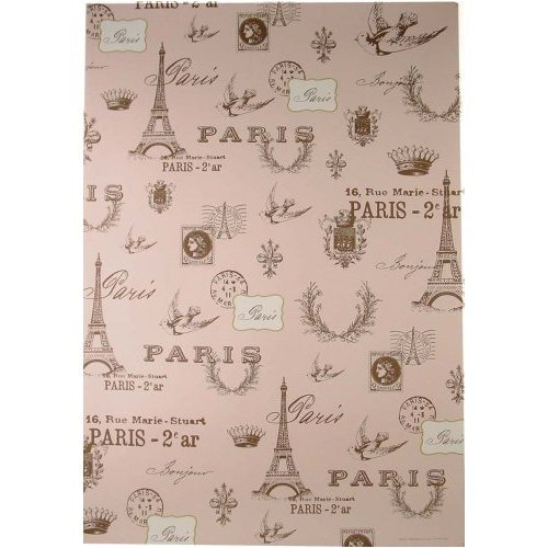 Pink Paris Cavallini Papers Decorative Wrap 20 by 28 inches