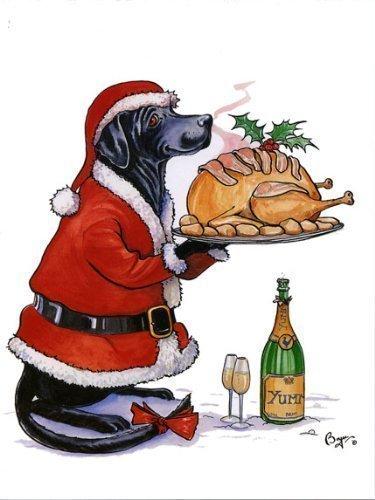 Parfait Présentation Carte De Noël par Bryn Parry. Chien Labrador habillé comme Père noël portion rôti turkey
