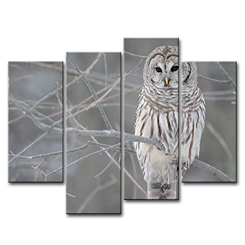 4 Piece Wall Art Painting White Owl In The Tree Prints On Canvas The Picture Animal Pictures Oil For Home Modern Decoration Print Decor