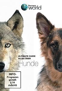 Ultimate Guide - Alles über Hunde - Discovery World