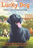 Lucky Dog: Twelve Tales of Rescued Dogs
