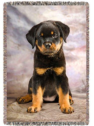 Rottweiler PuppyWoven Throw Blanket54 x 38 Inches
