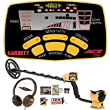 Garrett ACE 250 with Water-Proof Searchcoil and Headphones from DetectorWarehouse