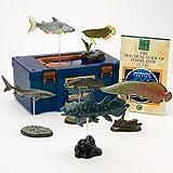 立体図鑑リアルフィギュアボックス フォッシルフィッシュ (古代魚)
