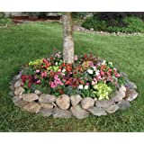 """Shady Annual Tree Flower Mat - Grow Shady Annual Border Garden Flowers. Includes: (1) Pre-seeded 17"""" x 5' Flower Seed Mat. Simply Roll out, plant and grow. Instant garden mat for flowering bushes. SEEDS OF: candytuft, baby's breath, coreopsis, columbine, purple cornflower and more!"""