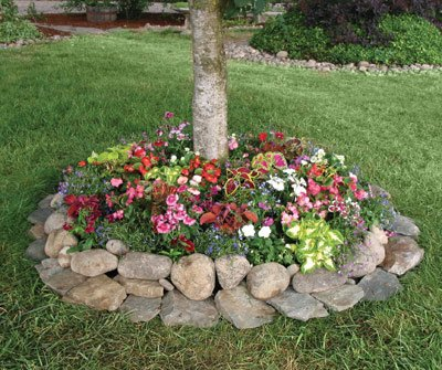 Shady flowering plants for Landscaping rocks under trees