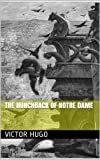 Image of THE HUNCHBACK OF NOTRE DAME (annotated)