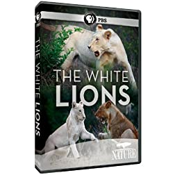 Nature: The White Lions