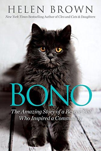 Buy Bono Now!