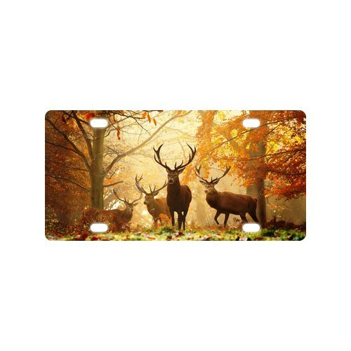 Animal License Plates - Wildlife License Plate Deer