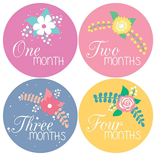 Pinkie Penguin Baby Monthly Stickers - Flowers and Hand Lettering - Baby Girl - Milestone Onesie Stickers - 1-12 Months - Baby Shower Gift - 1