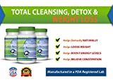 Colon Renewal - Finally, a Safe, Natural and Affordable Way to Cleanse and Revitalize - Boost Your Energy - and Shed Those Pounds - Guaranteed!