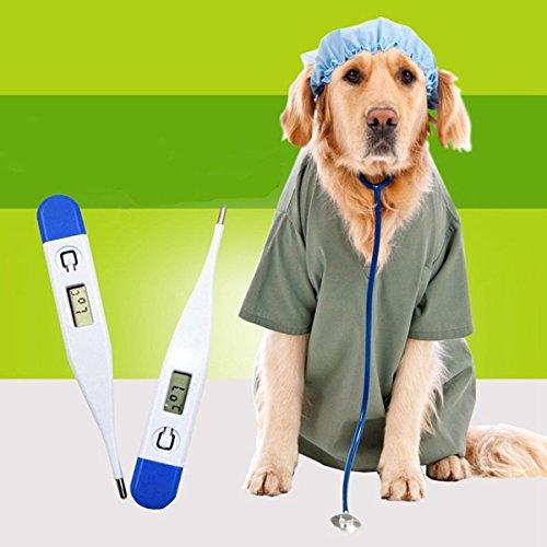 Artikelbild: Genaue Hund Digital-Thermometer Tragbare Hund elektronische Thermometer