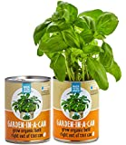 Back to the Roots Garden-in-a-Can, Grow Organic Basil, 2 Count