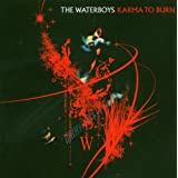 The Waterboys - Karma To Burnby The Waterboys