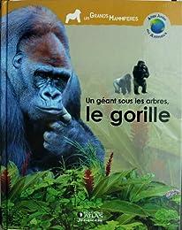 Un  géant sous les arbres, le gorille