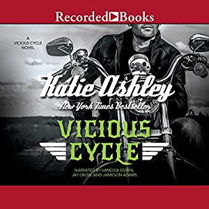 Vicious Cycle Audiobook