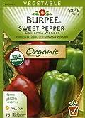 Burpee 60520 Organic Pepper, Sweet California Wonder Seed Packet