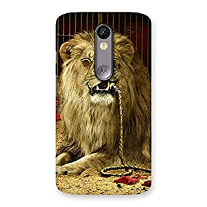 Dude Lion Multicolor Back Case Cover for Moto X Force