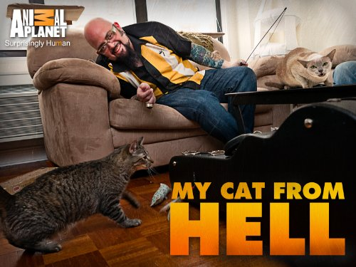 My cat from hell season 3 episode 8 my cat for Jackson galaxy petsmart