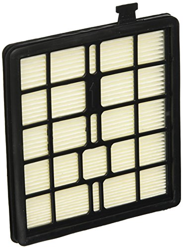 Royal Dirt Devil Filter, F45 Sd40000 (Dirt Devil Sd40010 compare prices)